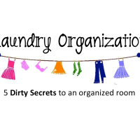 5 Dirty Secrets :: Laundry Room Organization