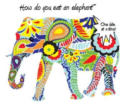2014 Goals, Success, Eating an elephant, plan