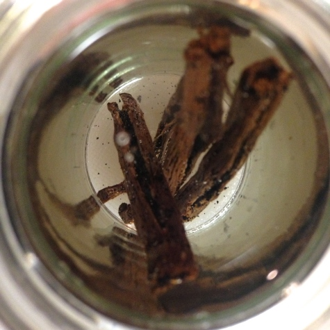 Making your own DIY Homemade Vanilla Extract - Easy - Delicious - Spectacular