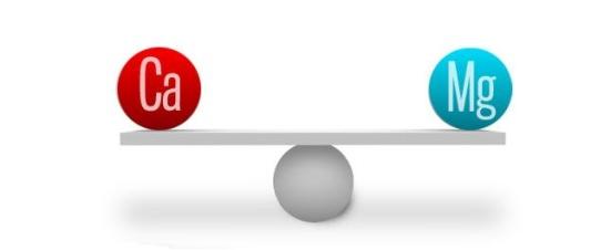 Calcium vs Magnesium Oil - Equal Proportions