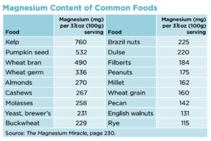 Magnesium content of common foods